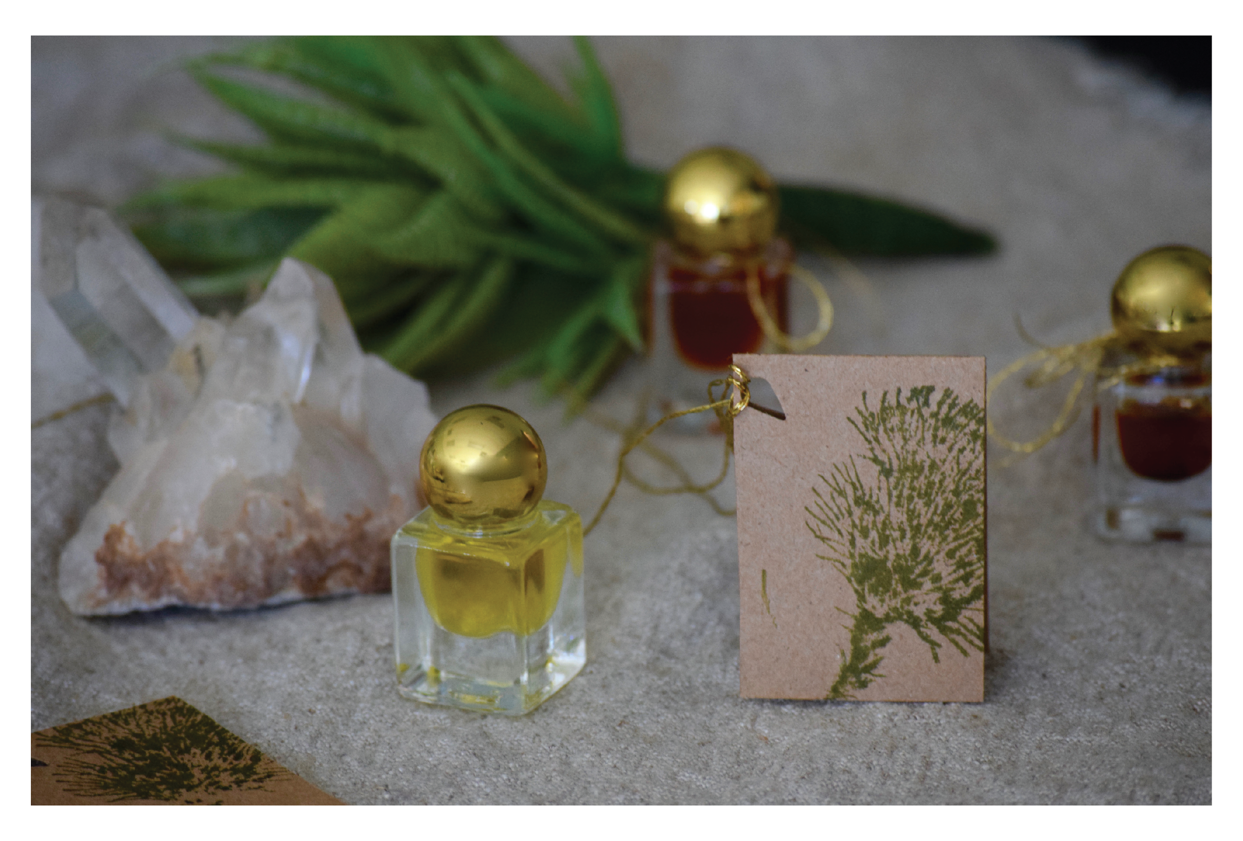 Boost your Well-Being with the Scents of the Holiday Season